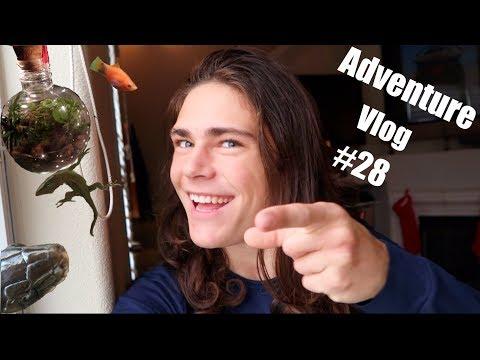 Adventure Vlog #28 | Fish, Terrariums & Macro Photography