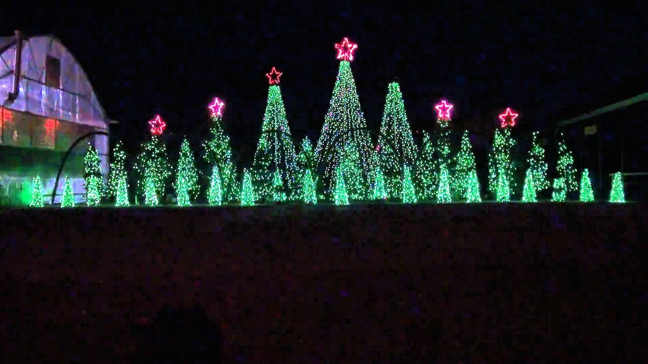 Jingle Bells Techno   Synchronized Christmas Light Show To Music   YouTube