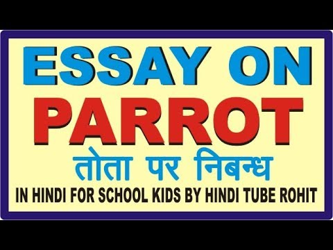 essay on parrot bird in marathi Essay in parrot in marathi on parrot want to share some information with people how to tame a parrot to make a good friend specific purpose: by the end of my speech you are going to be informed with some important steps how to teach a parrot to be tamed central idea/thesis: i am going to teach you how to get the bird out of cage and tame to enjoy the abilities of the smartest bird in the world.