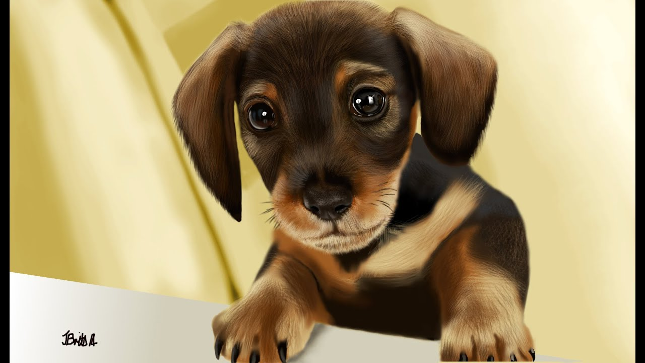 Puppy Dog (GIMP Speed Painting) - YouTube