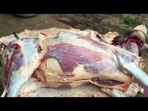Full Cow Cutting, Amazing Cutting Skill, Asian Street Food,