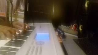 KORG TRITON PIANO STRS Resimi