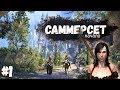 TES Online ▶ Начало игры на острове Саммерсет (Summerset Isle) [Прохождение #ep1]