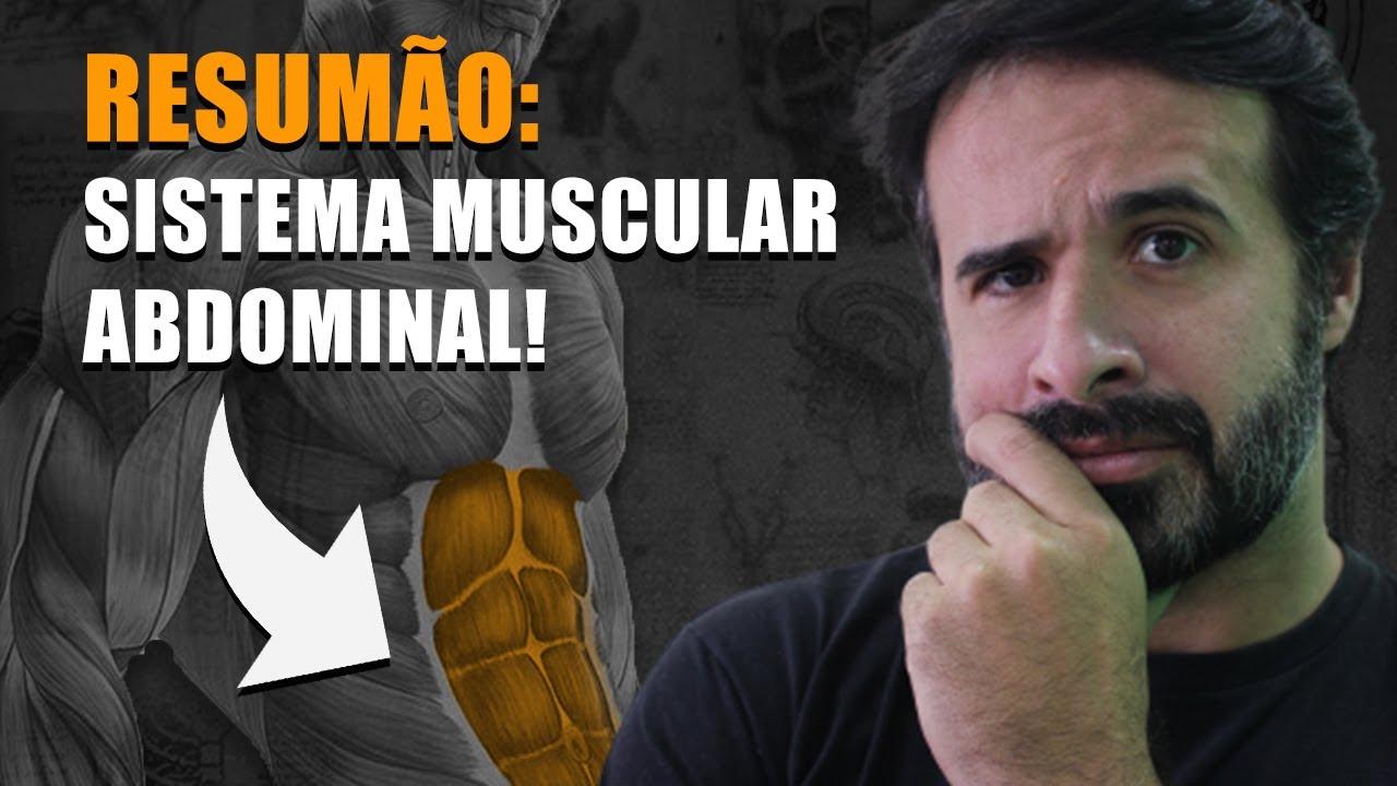 Estiramiento principales músculos que insertan en el