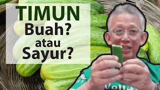 TIMUN! Buah? atau Sayur?, 20 MANFAAT TIMUN yang terbaik | Dr. Noordin Darus