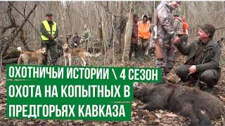 Охотничьи истории. Сезон 4. Охота на копытных в предгорьях Кавказа