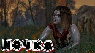 Witcher 3 Хозяйки леса 1