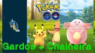 Garados Entwickelt! Chaneira aus Quest + Viele Eier + Noktuska & Tohaido ~Let's Play Pokémon GO #75~