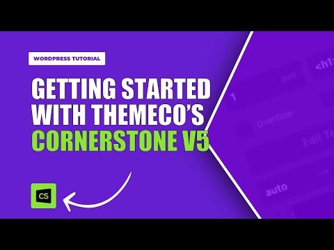 Pro Theme Basics 101 | Understanding the Interface