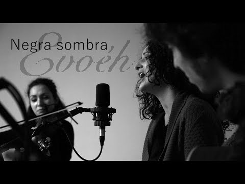 Negra sombra - Rosalía de Castro (letra y subtítulos)