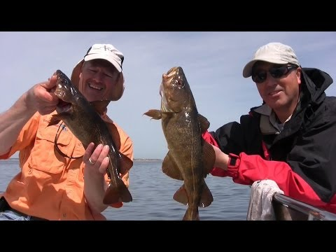 How To Jig For Saltwater Cod - Part 1