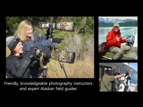 Magic of Alaska:  Unforgettable Wildlife Photography Tour and Workshop
