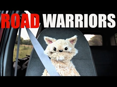This Cat is NED - EP22 – Road Warriors