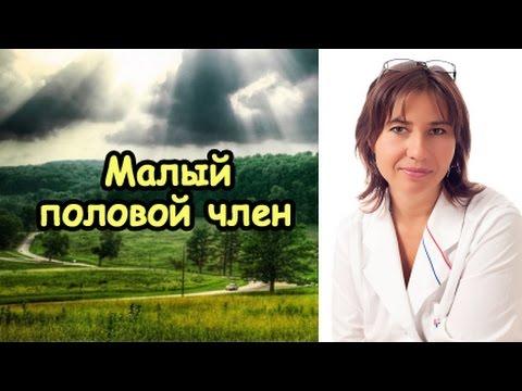 Частный Доктор - медицинский центр в Москве, клиника
