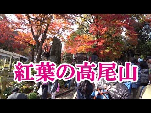 2016/11/20 紅葉の高尾山 混雑状況(1号路で登頂)