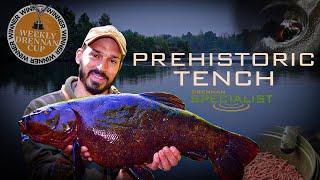 Big Tench From Big Pits | Daniel Woolcott | Specimen Tench Fishing