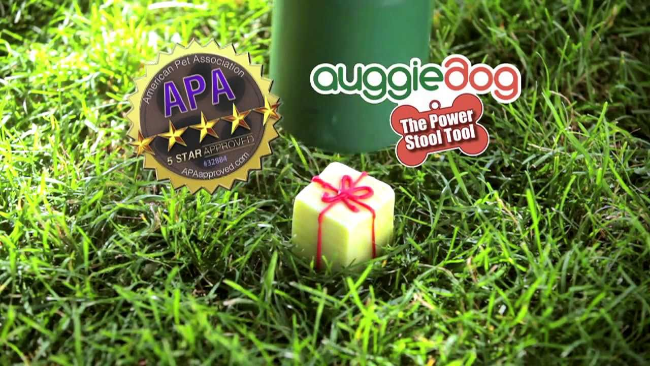 Automatic Pooper Scooper | Dog Poop Pick Up Tool | Auggiedog