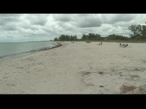 PM Tampa Bay with Ryan Gorman - The Dirtiest Beaches in the Tampa Bay Area