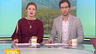 Выращивание тепличных овощей. Утро с Губернией. 22/05/2018. GuberniaTV