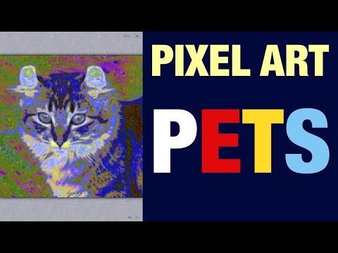 AMERICAN CURL CAT BREED PETS PIXEL ART VIDEO #CATS