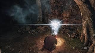 Zagrajmy w Dark Souls 2: Scholar of the First Sin (part 14)