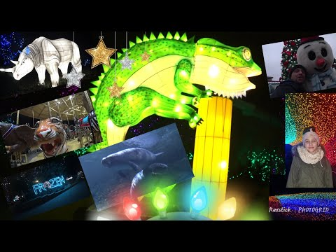 Cincinnati Zoo Christmas vlog and PNC festival of lights 2017
