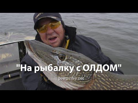 приеду в гости на рыбалку