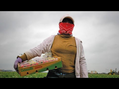 Farmworkers, Domestic Workers & Women in Low-Wage Jobs Face Challenges Reporting Sexual Assault