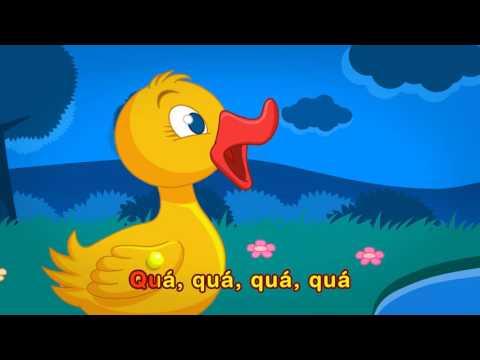 Pintainho Amarelinho - Cinco Patinhos (Vídeo Oficial)