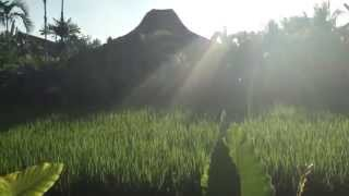 Gambar cover Airbnb video tour in Ubud, Bali