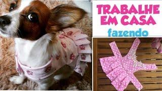 Como fazer um Lindo Vestidinho para Cachorra