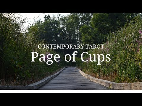 Page of Cups in 3 Minutes - YouTube