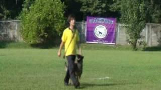 2010 Rakan K9 Schutzhund Seminar & Trial Overall Champion - Obedience