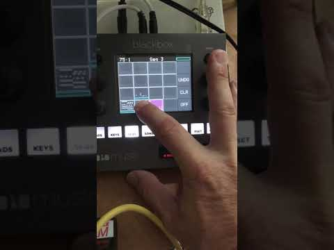 1010music Blackbox sequencing Kiwisix, Airbase and Model D