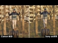 Sony a6500 vs. Canon 80D - 4k vs FullHD Video Quality Test