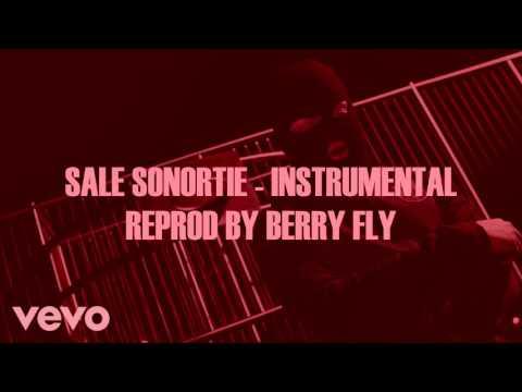 KALASH CRIMINEL - SALE SONORITE (INSTRUMENTAL BY TWANG TWANG)/REPROD BY BERRY FLY