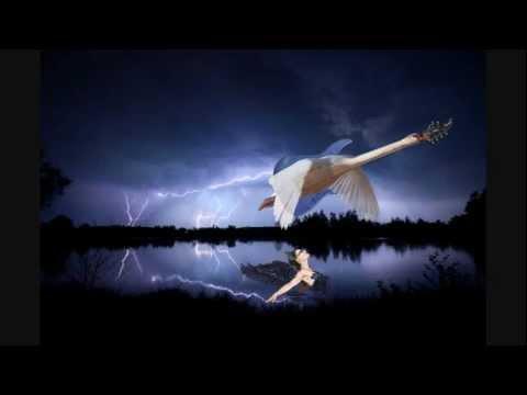 Swan Lake [metal cover]