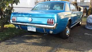 1966 Mustang 49 years old