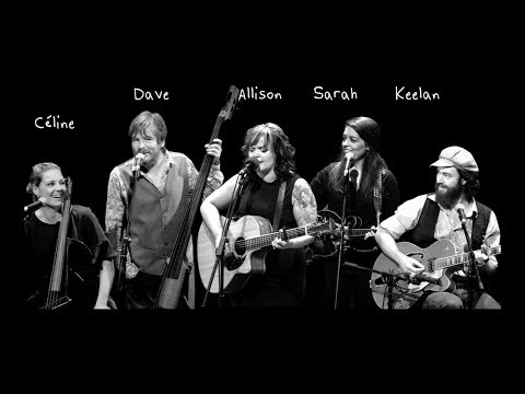 Bird Set Free – Allison Crowe and Band Soar w. Sia Song!