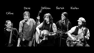 Bird Set Free Allison Crowe and Band Soar w