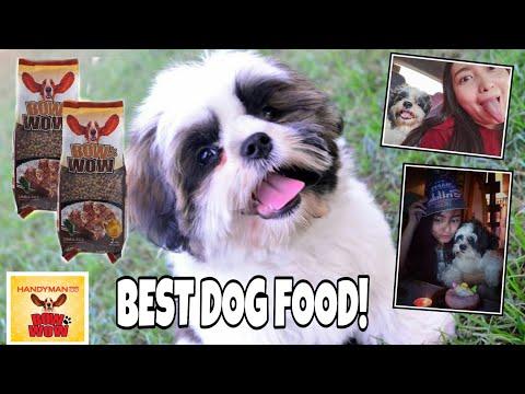 Ano Ang Best Dog Food Para Sa Shih Tzu?