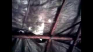 my Bender Tent
