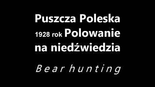 Polowanie na niedźwiedzia 1928