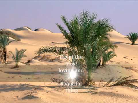 Egyptian oases