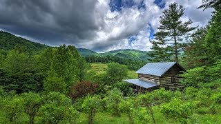 Lone Pine Lodge - An Asheville Cabin Rental By Carolina Mornings