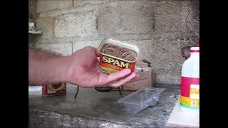 SPAM Candles Tips And Trials For An Interesting DIY Project