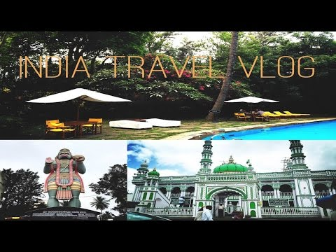 THE ROAMING CHI | India Travel Vlog