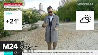 """""""Утро"""": переменная облачность и до 21 градуса тепла ожидаются в Москве 2 сентября - Москва 24"""