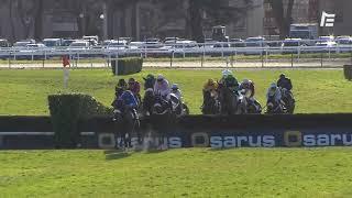 Vidéo de la course PMU PRIX RENE CRAMAIL