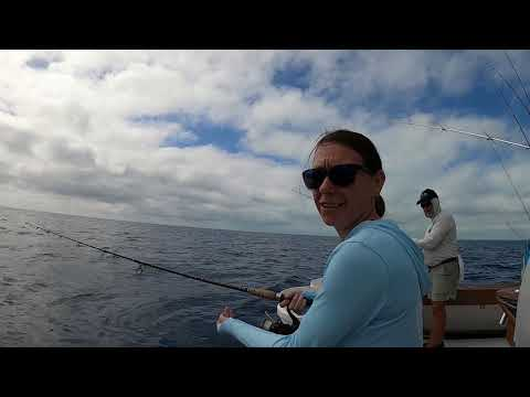 Fishing Aboard Catch 22 Out Of Bud N' Mary's Marina.  Sailfish Adventure In Islamorada!
